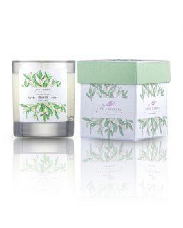 Olive Oil Monoi Φυσικό αρωματικό κερί σόγιας – Ιδανικό για μασάζ σώματος